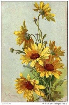 Nurcan Cüceoğlu - paint and art Watercolor Flowers, Watercolor Paintings, Sunflower Art, China Painting, Vintage Flowers, Painting Inspiration, Art Pictures, Art Drawings, Aster