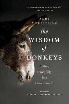 We're currently reading this book. So love the photo on the cover! The Wisdom of Donkeys: Finding Tranquility in a Chaotic World by Andy Merrifield I Love Books, Great Books, Books To Read, Reading Lists, Book Lists, The Donkey, Mini Donkey, Donkey Pics, Donkey Funny