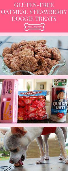 Gluten-Free Oatmeal Strawberry Doggie Bites