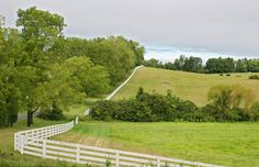 This White Fence is a tour guide that will take you all the way around this lovely Virginia farm.  www.whitefence.com