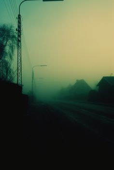 """BLOGS ON - What Is Horror For? (""""The Mist"""") http://isawlightningfall.blogspot.com/2014/05/what-is-horror-for-mist.html"""