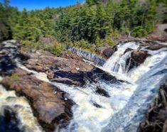 New York Attractions, Instagram Repost, Waterfalls, Middle, Rainbow, Rain Bow, Rainbows, Falling Waters, Waterfall