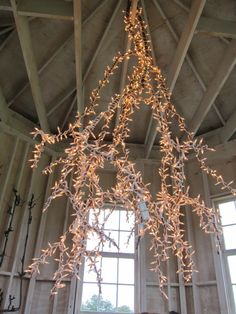 Simple yet so fabulous: hanging branch inside from ceiling at Garden Home Retreat