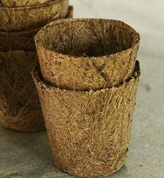 Above: Cow Pots, developed by two Connecticut farmers as an environmentally friendly way to re-use manure, are odorless and biodegradable. Made of dried manure composted with natural fibers, a package of 12 3-inch pots is $7.95 from Veseys.Eco-Friendly Cow Pots : Remodelista