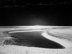 ◦ Schierland - Vivian Ammerlaan Flora, Beach, Water, Outdoor, Gripe Water, Outdoors, The Beach, Plants, Beaches