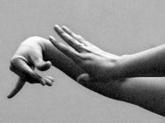 The hands of a flamenco dancer...