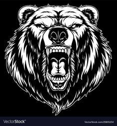 Head a ferocious grizzly bear vector Bear Vector, Dog Vector, Vector Graphics, Grizzly Bear Tattoos, Grizzly Bear Drawing, Grizzly Bears, Art D'ours, Angry Bear, Bild Tattoos