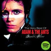 Goody Two Shoes, a song by Adam Ant on Spotify