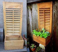 re purposed box shutter succulent planter, flowers, gardening, repurposing upcycling, succulents