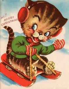 Christmas cat on sled