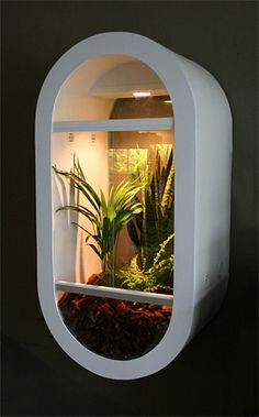 Awesome DIY enclosure made by BertS on Reptile Forums UK.
