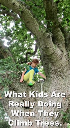 What kids are really doing when they climb trees. The next time you watch a kid climb a tree, sit back and enjoy it - it's management theory in a nutshell!