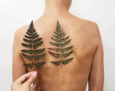 This wild forest fern I brought from the Carpathians mountains. Tattoo made with real leaf stencil. Tattoo Artist: Rit Kit