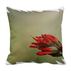 Indian Paintbrush White Edge Throw Pillows from Florals by Fred #zazzle #gift #photogift