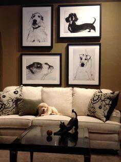 Noriega Furniture Showroom Shots