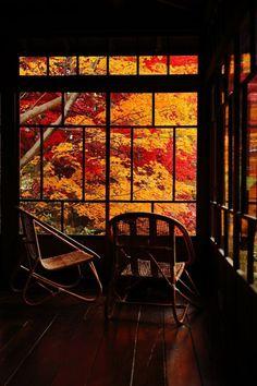 Gardening Autumn - Japanese Garden in Morioka, Iwate, Japan Arquitectos Zaha Hadid, Zen, Art Japonais, Through The Window, Window View, Japanese House, Japanese Gardens, Beautiful Places, In This Moment