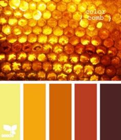 honeycomb color - design seeds: this site is awesome! Colour Pallette, Colour Schemes, Color Combos, Color Palate, Design Seeds, Color Concept, Color Bordo, Honey Colour, Mellow Yellow