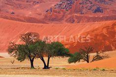 """sossusvlei desert with trees"" von Bernd Hoyen #fotografie #photography #fotokunst #photoart #digitalart #kunst #art #abstrakt #abstract #berg #berge #mountain #mountains #wüste #wüsten #desert #deserts #rot #red #natur #nature #landschaft #landschaften #landscape #landscapes #namibia #sossusvlei"