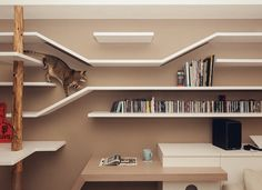 'Perfect Cat House' With A Bookshelf That Doubles As A Cat's Playground - DesignTAXI.com