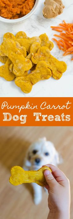 Homemade Pumpkin Carrot Dog Treats - your pup deserves a treat! These are so simple, healthy, and your dog is going to love them!