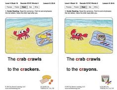 BOOK 16: DECODE WORDS WITH CONSONANT CLUSTERS (NEWITT DECODING SERIES) - TeachersPayTeachers.com