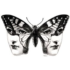 Tattoo Sketches, Tattoo Drawings, Drawing Sketches, Art Drawings, Moth Drawing, Butterfly Drawing, Arte Obscura, Arte Sketchbook, Cute Tattoos
