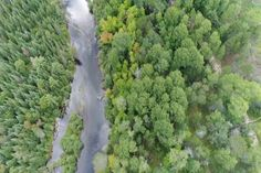 Sights And Sounds Drone Edition Over The Au Sable River