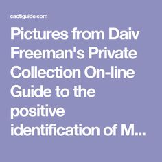 Pictures from Daiv Freeman's Private Collection On-line Guide to the positive identification of Members of the Cactus Family