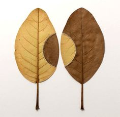 Crocheted Leaf Sculptures by Susanna Bauer. #leaf #sculpture #nature
