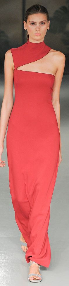 Barbara Casasola Spring 2015 Ready-to-Wear - That Lady In Red ~