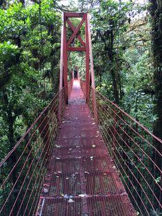 Crossing the jungle....in Costa Rica
