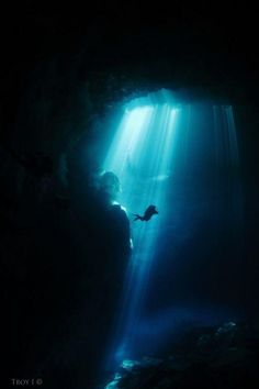 Pit Cenote Photo by Troy I. — National Geographic Your Shot