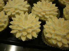 Lemon cupcakes for MacMillan Coffee Morning