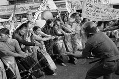 Buddhist monks and women pull at a barbed-wire barricade that was set up in front of Saigon's Giac Minh Pagoda to halt a demonstration on 17 July 1963. Police wielding clubs injured at least 50 people during the protest, one of many during this period by Buddhists opposed to the Diem regime. The following month, secret police raided temples throughout the country, an act that only heightened anger against the government Photograph: Horst Faas/AP