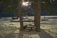 Winter sun in Alberta   Flickr - Fotosharing!