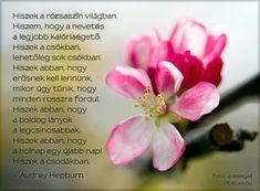 Audrey Hepburn, Life Quotes, Floral, Minden, Quotes About Life, Quote Life, Living Quotes, Flowers, Quotes On Life