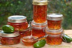 Perfect for holiday entertaining and gift-giving! Red & Green Pepper Jelly