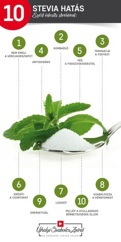 Stevia, Herbs, Health, Health Care, Herb, Salud, Medicinal Plants