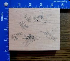 STAMPA ROSA HOUSE MOUSE rubber stamp XL RIDING on HUMMINGBIRDS X-RARE! #StampaRosa