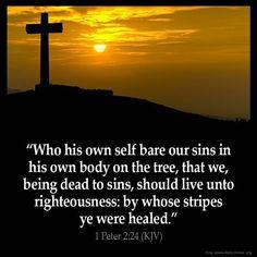 1 Peter 2:24 KJB