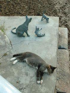Intruder!!!... (Sculptures of the Singapura cat aka Kucinta by the Singapore River.)