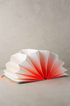 Ombre Plisse Folder