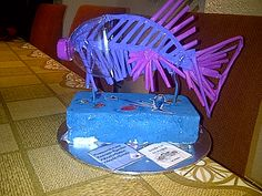 Fish skeleton, Grade 5 NS project