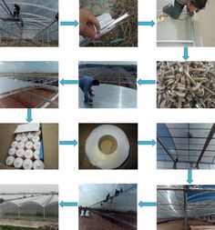 XINHAI polycarbonate greenhouse covering, View commercial greenhouse for sale, Xinhai Polycarbonate Greenhouse Product Details from Baoding Xinhai Plastic Sheet Co., Ltd. on Alibaba.com