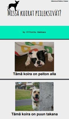 Finnish Language, Finland, Dogs, Animals, Animales, Animaux, Doggies, Animais, Dog