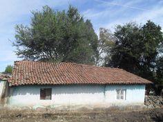 Otra vista de la casita de don Goyo Gómez y familia