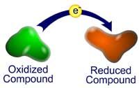 Concepts In Biochemistry - Redox Reactions Science Chemistry, Organic Chemistry, Cell Respiration, Citric Acid Cycle, Redox Reactions, Electron Transport Chain, Biochemistry, Physiology, Science And Nature
