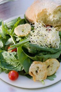 Salades pour le déjeuner - salade composée