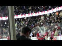 Lluvia de ositos de peluche en un partido de hockey sobre hielo #Video | Cachicha.com