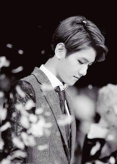 Baekhyun - so beautiful..